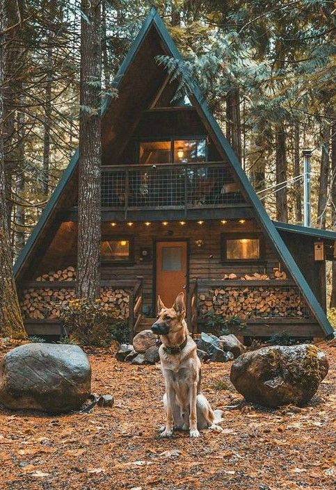 My dream. I home like that in the wood with a big dog. Nothing beats that!