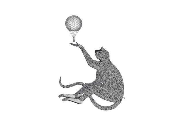 Tom Berry: Monkey King