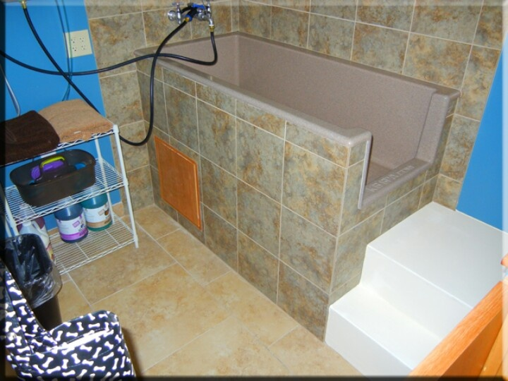 10 best dog wash images on pinterest dog wash animales and dog tiled wash tubs with steps solutioingenieria Images