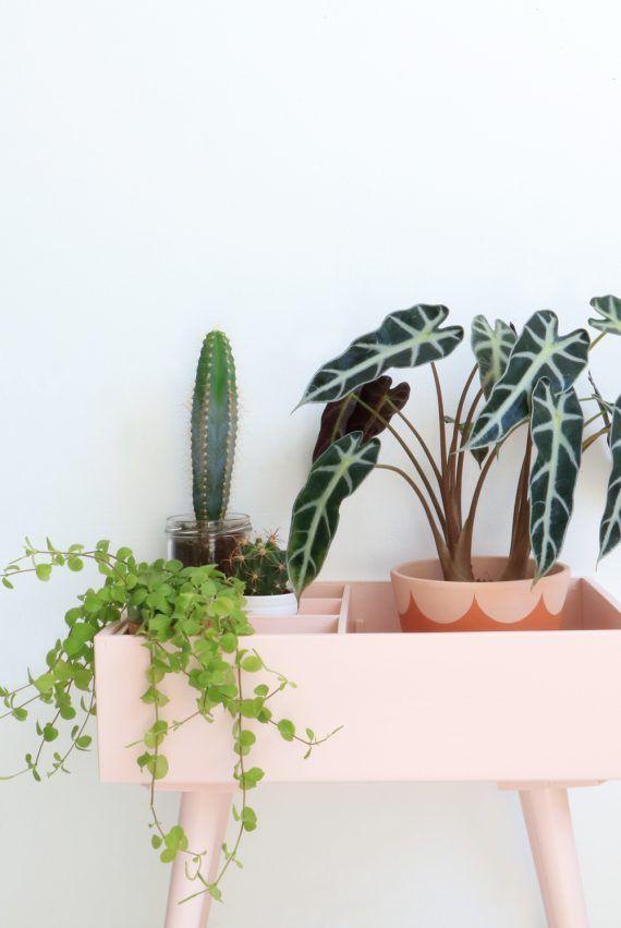 Lichtroze plantenkastje | My Attic
