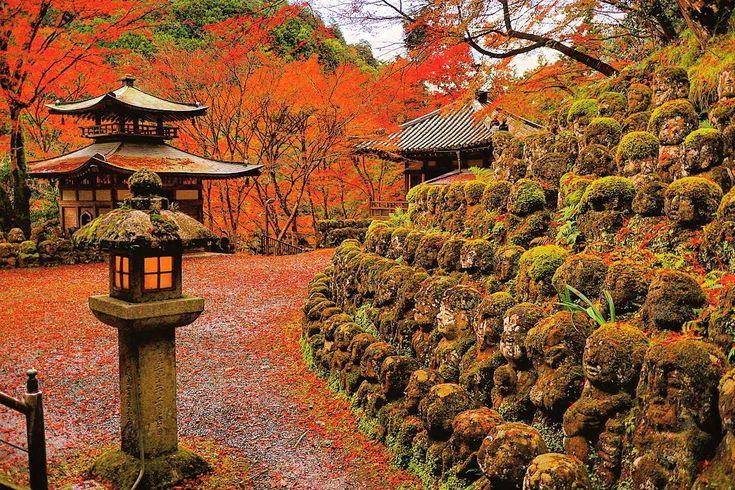今日、京都嵯峨野『愛宕念仏寺』 - 紅葉🍁が見たいけど、人がごった返してる所はいややなと思いつつ、市内を何も考えずに走ってるとここにたどり着いた(^人^) まぁ、いつもより人は多いけど普通の観光地程度🎵 紅葉🍁ちょっとピーク越えた辺りかなくらいでまだまだ綺麗✨🍁 帰りしなは、渡月橋周辺の色付きをを見に行くと渡月橋がみっちり人が詰まっていてえぐい状態(´・д・`) 車も四条通りから桂川沿いが渋滞していて、嵐山にたどり着くまで大変やろなー状態やった😅 - まぁ渋滞覚悟してきてはるならなんも言わんけど、京都の春秋は慣れん人が車で無計画に来たら観光どこじゃないよと高速降り口に忠告しといてほしい( ´,_ゝ`) - #京都#嵯峨野#愛宕念仏寺#寺#紅葉🍁#紅葉#秋#綺麗#kyoto#japan#japanese#beautiful#autumn#autumnleaves#autumnleave#igersjp #ig_japan #lovers_nippon #instacool#instagood#photo#photolabo_jp#view#temple