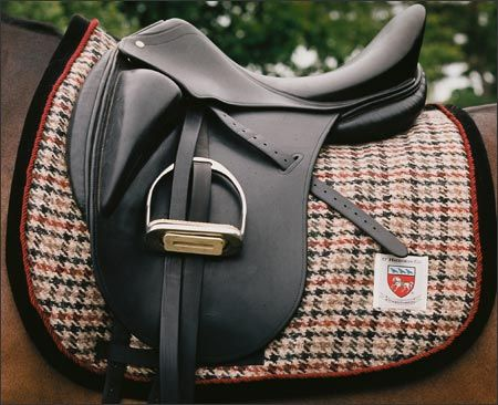Yes, yes, and yes. I hope I can find a saddle pad like this for the saddle I'm looking into for lessons ;)