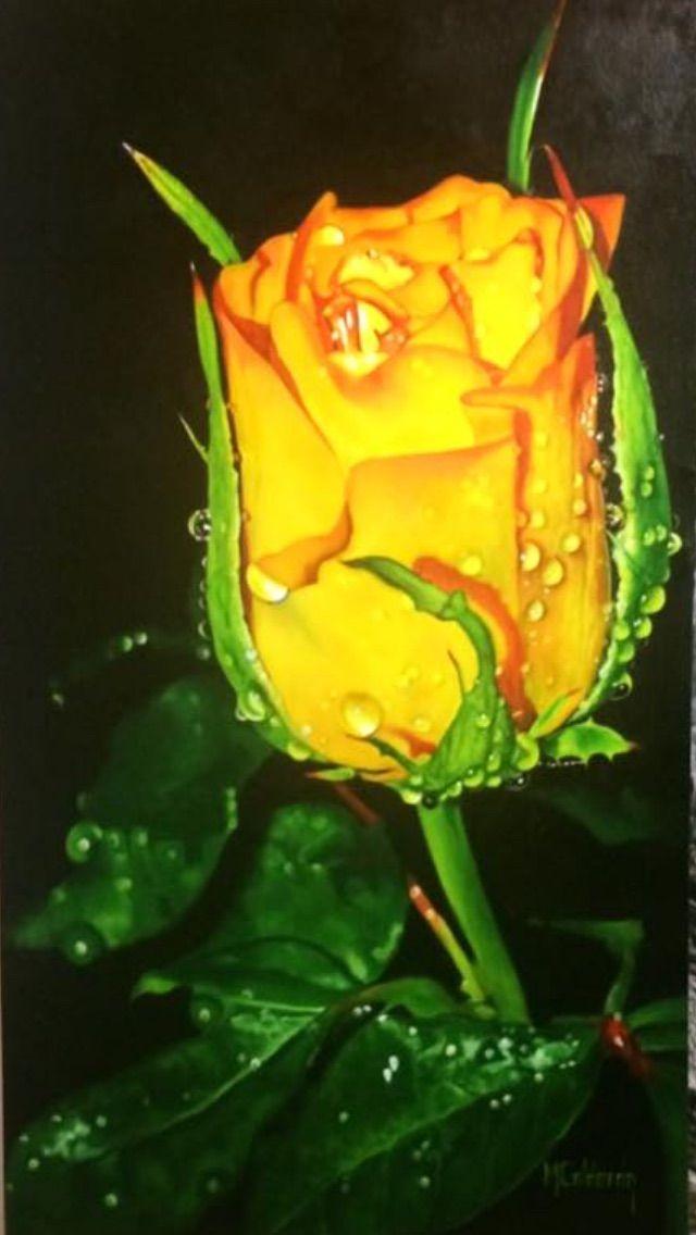 Rosa amarilla#cuadro al oleo#pincel#medidas  50/90por M.Calderon.
