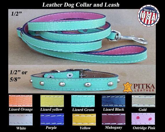 Puppy Collars and Leashes - Green Puppy Collar with studs and matching Puppy…