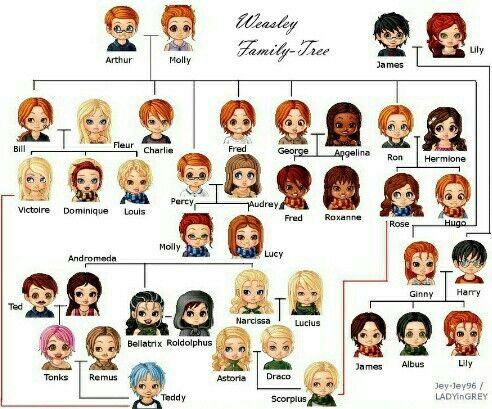 Je vous propose un quizz que vous pourrait poser à vos invités lors d'une soirée entre amis. Vous pouvez inventé d'autres questions pour les débutants ou les pro de Harry Potter. 1)Combien y a-t-il d'enfants Weasley ? 2)Comment s'appellent les trois enfants de Ginny Weasley et Harry Potter ? 3) Comment s'appelle le fils de Remus et Tonks ? 4)Avec qui Bill Weasley fait-il des enfants ? 5)Quel est le lien entre la famille Weasley et la famille Malefoy ? 6)Roldolphus sort avec qui ?