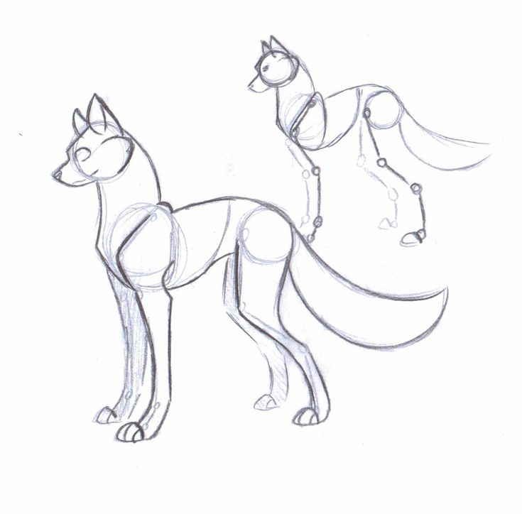 images of how to draw a dog