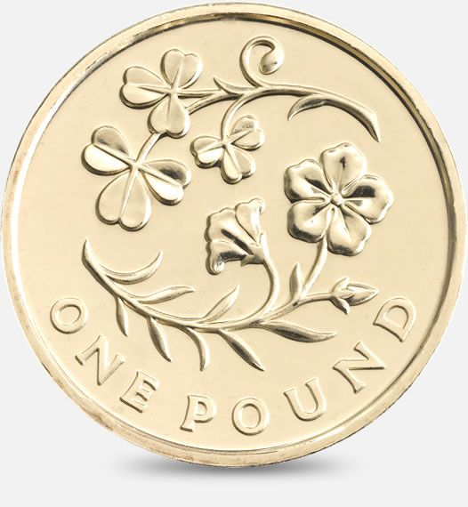 2014 £1 (One Pound) Coin featuring a depiction of the floral emblem of Ireland #CoinHunt