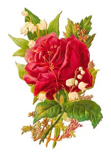 Antique Images: Free Flower Graphic: Digital Scrap of Red Rose and Lily of the Valley Flowers