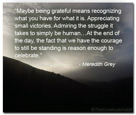 A Gratitude Quote from Grey's Anatomy. http://thegratitudehabitjournal.blogspot.com/