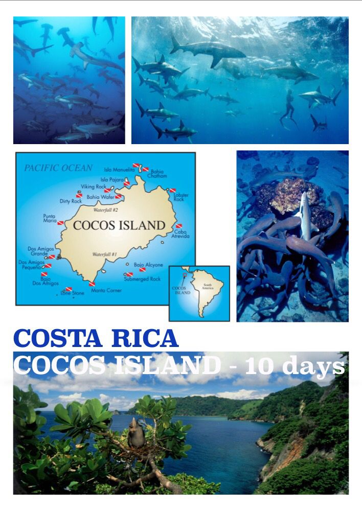 Best Diving - for more info bestdiving@yahoo.com