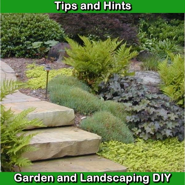 Helpful Landscaping Techniques For Creating The Perfect Yard Diy Landscaping Landscape Live Plants