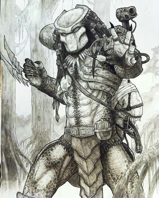 #predator #avp #alien #sketch #fanart by Ian Q (@iq808)