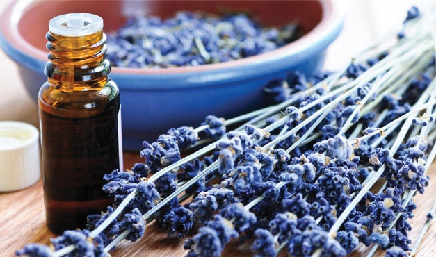 Aromatherapy - the art and science of essential oils.