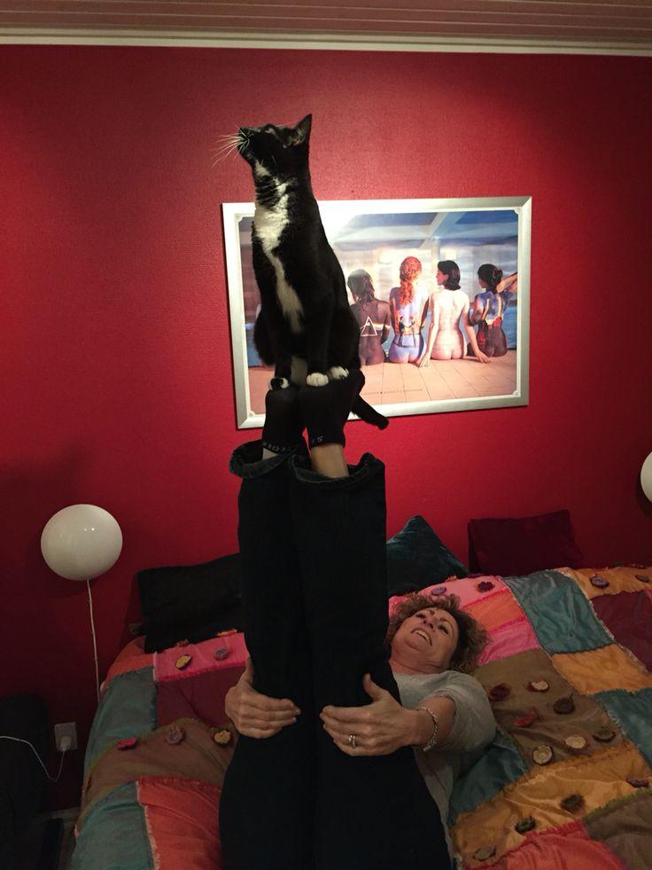 Baby elsker højder. Tror jeg kan optræde med hende :-)