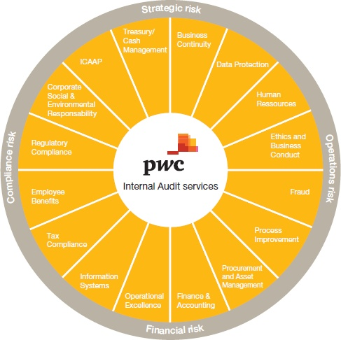 PWC Internal Audit Services - Risk Framework