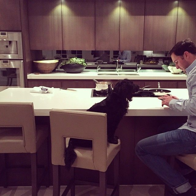 Mr paterson and Bo waiting for me to make dinner. All I want to do is go back to california and be on the beach #reluctant #domesticgoddess #thisisnotthebeach #home #kitchen #california to #Surrey