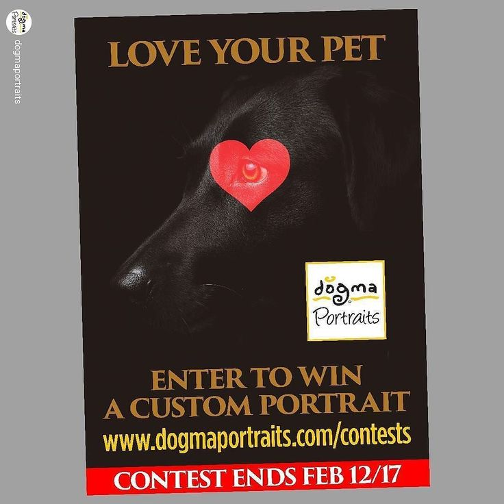 I've got a contest on my DOGMA Portraits channel for you animal lovers.  repost from @dogmaportraits New DOGMA Portraits contest giving away a custom portrait just in time for Valentine's.  Deadline Feb 12 2017.  Enter at http://ift.tt/2kPwYWs  #contest #giveaway #sweepstakes #portrait #dog #cat #pet #valentines #art #cliffblank