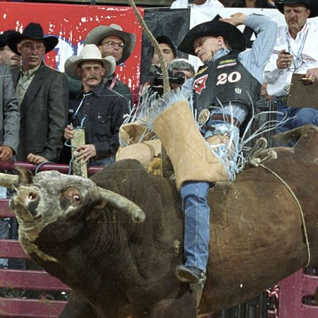 Chris Shivers and Terry Don West post 96-point scores, while Ty Murray gets 95.5 on Red Wolf and Jim Sharp puts up 94 on Jim Jam.