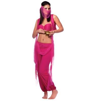 Arabian Princess Costume Adult 4060