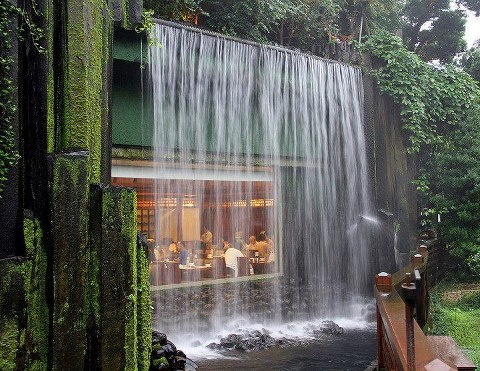 Restaurant Chi Lin Nunnery in Hong Kong, China located in a temple garden complex, one of the top destination points in Hong Kong.