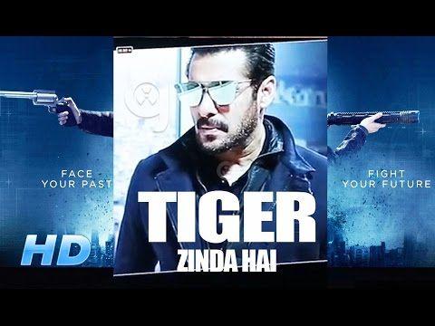 tiger abhi zinda hai || ek tha tiger 2 coming soon || salman khan katrina kaif - YouTube