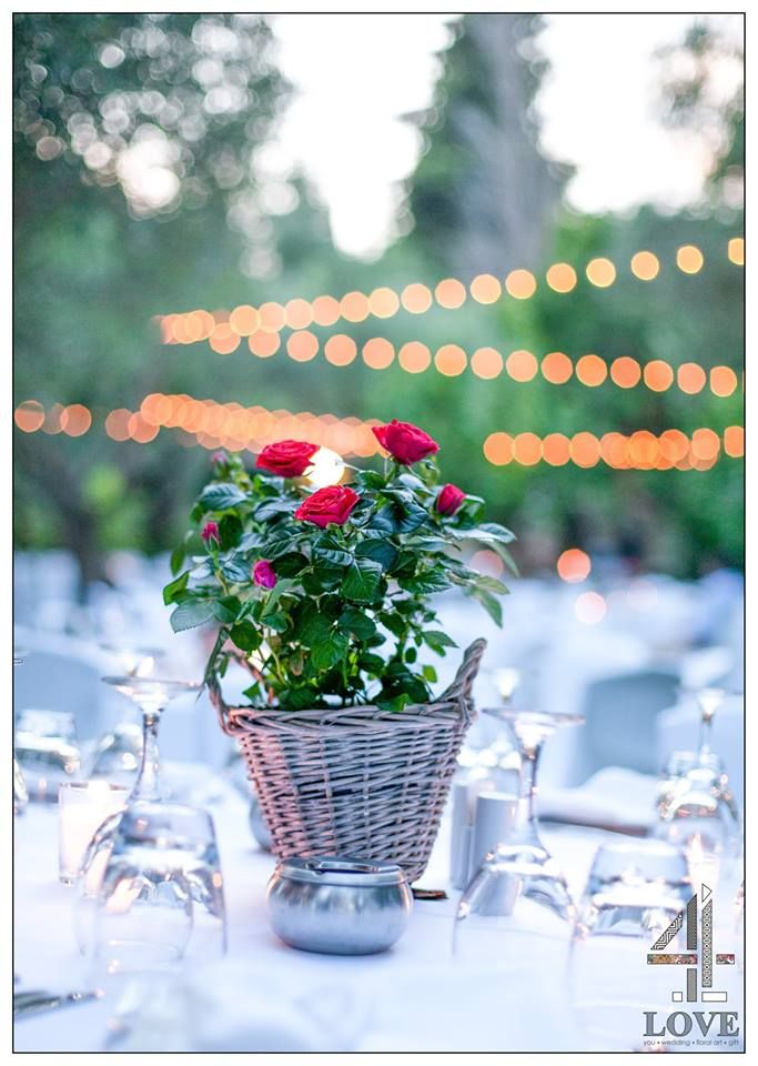 #chic #rustic #garden #γάμος, #centrepiece τραπεζιών καλεσμένων ψάθινο καλάθι με κόκκινες mini #τριανταφυλλιές - Floral Artist Ντίνος Μαβίδης & Concept Stylist Μάνθα Μάντζιου #4LOVEgr — στην τοποθεσία 4LOVEgr.