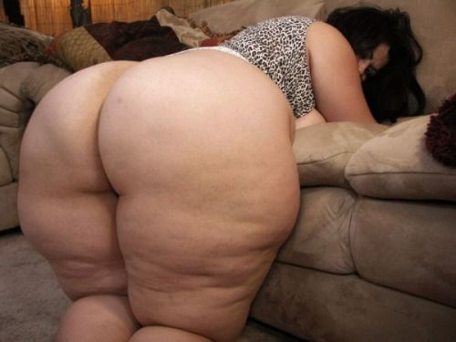 Bbw Thick Ass Porn