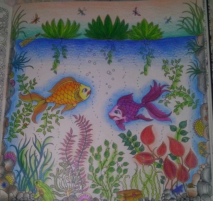 26 best images about fish secret garden peixe jardim for Colorful fish book