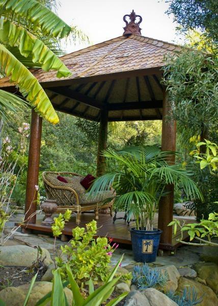 Backyard Dreaming