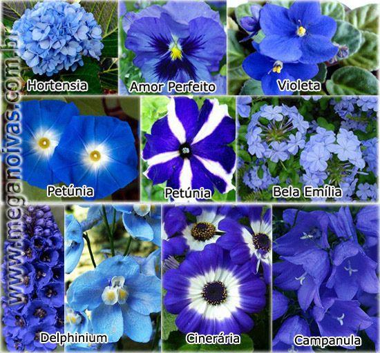 Que disse que decoração azul não pode ter flores azuis?  Vejam a grande variedade de flores que podem ser usadas.
