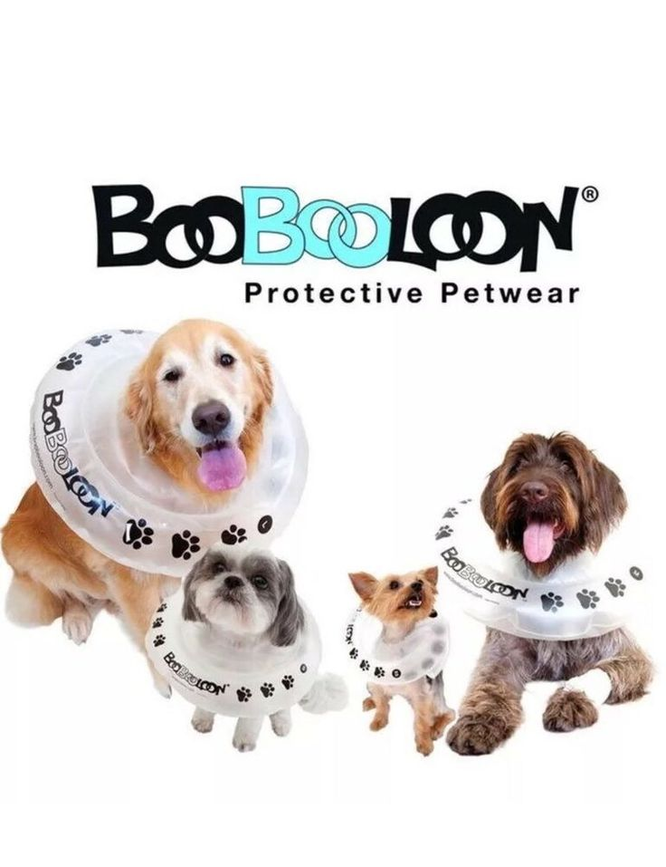 Boobooloon M Dog Pet Recovery Collar Post OP Spay Neuter ...