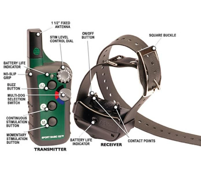 E-Collar Review: OL Tests the Best Electronic Dog Collars | Outdoor Life