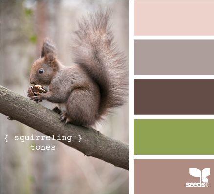 squirreling tones: Colour, Ideas, Color Palettes, Design Seeds, Bedroom Colors, Bedroom Design