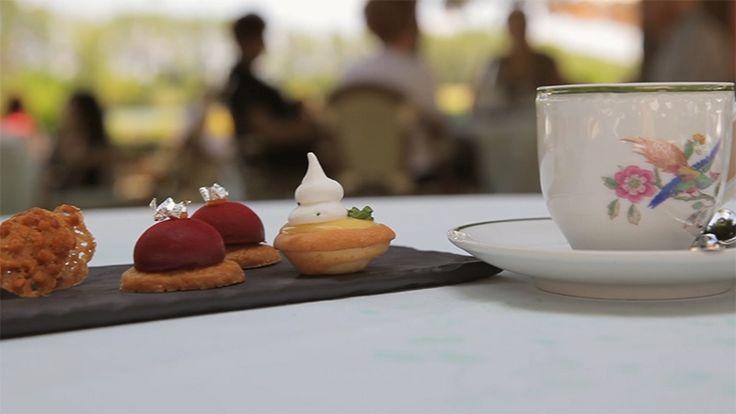Dans un cadre idyllique sur les bords du Rhône, le restaurant Beau Rivage vous accueille sur ses terrasses à fleur d'eau pour découvrir une cuisine pleine de saveurs et toute en finesse. http://www.restovisio.com/restaurant/restaurant-beau-rivage-4876.htm