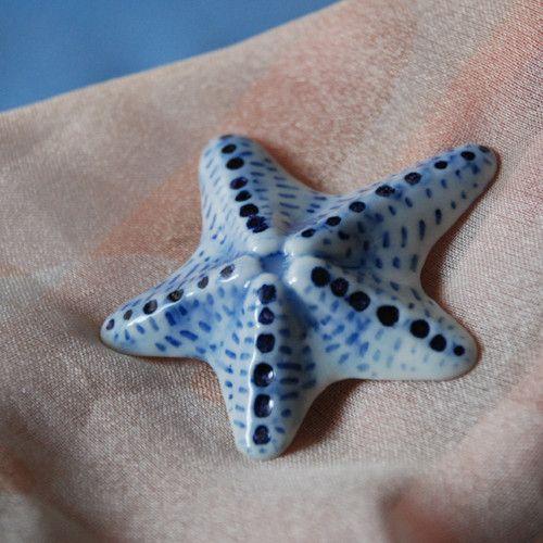 Hvězdice modrobílá