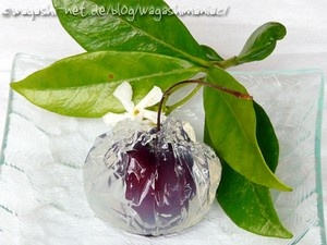 Wow! cherry in the jelly! Looks yummy. #Japan #Sweets #Wagashi