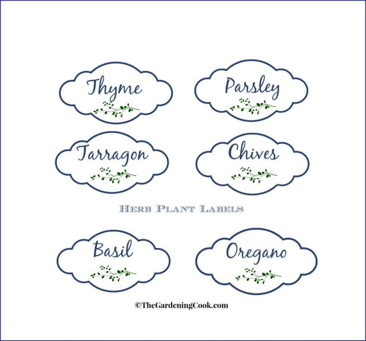 Looking for a pretty way to dress up the pots that you use for herbs, and label them at the same time?  These cute herb planter labels can be just printed off and then added to your pots in no time at all. These labels are some that I made in Pic Monkey.  (great graphic…Read more