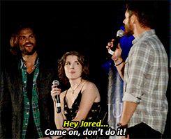 [gifset] Jared reads Jensen's Mind