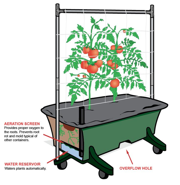 Large Redwood Planter Box For Tomatoes: 51 Best Ideas About Self-Watering Planters On Pinterest