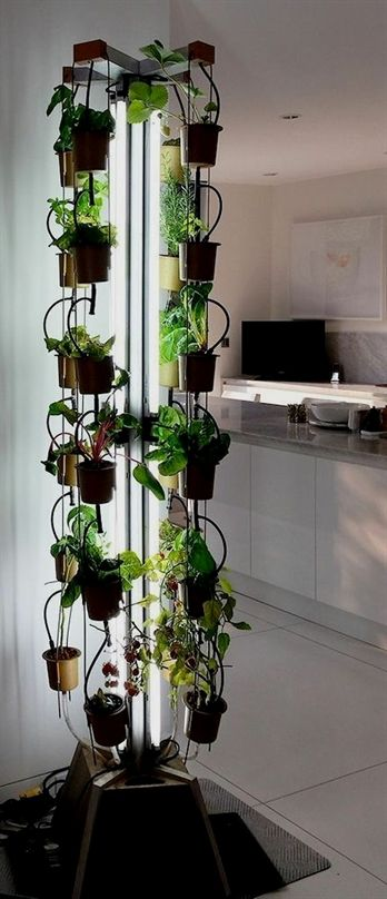 Of Having My Own Indoor Garden So That I Can Be Self Sufficient During Winter But Live In A Tiny Apartment And Have No Room For Hydroponic System