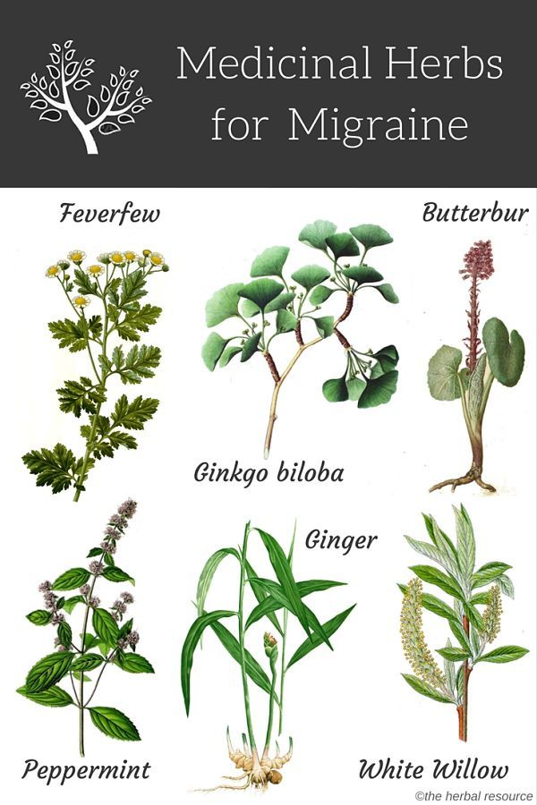 Here are some herbal remedies for natural migraine headache treatment and relief. Which ones have you tried?   ...More