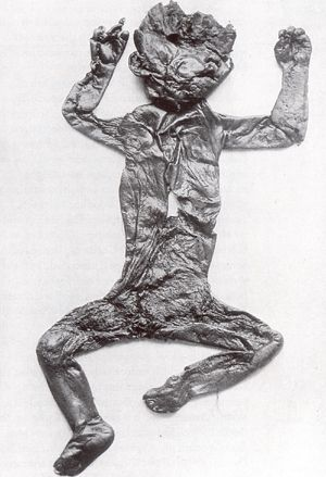 The mummified remains of an apparent strange humanoid creature has been found in Northern Germany near where the 3600 year old Nebra Sky Disk ...