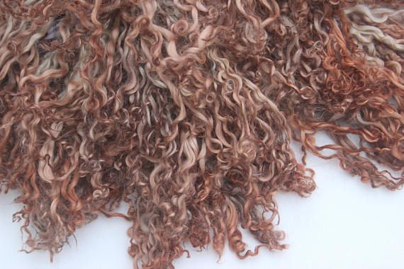 Logwood Sorghum All Natural Dyed Teeswater Lamb Locks Super Etsy Natural Dyes Dye Hand Spinning