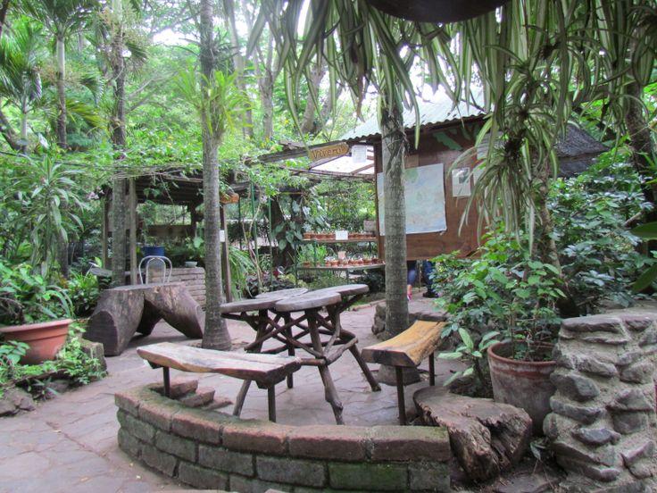 17 best images about nicaragua on pinterest ometepe san for Resto jardin japones