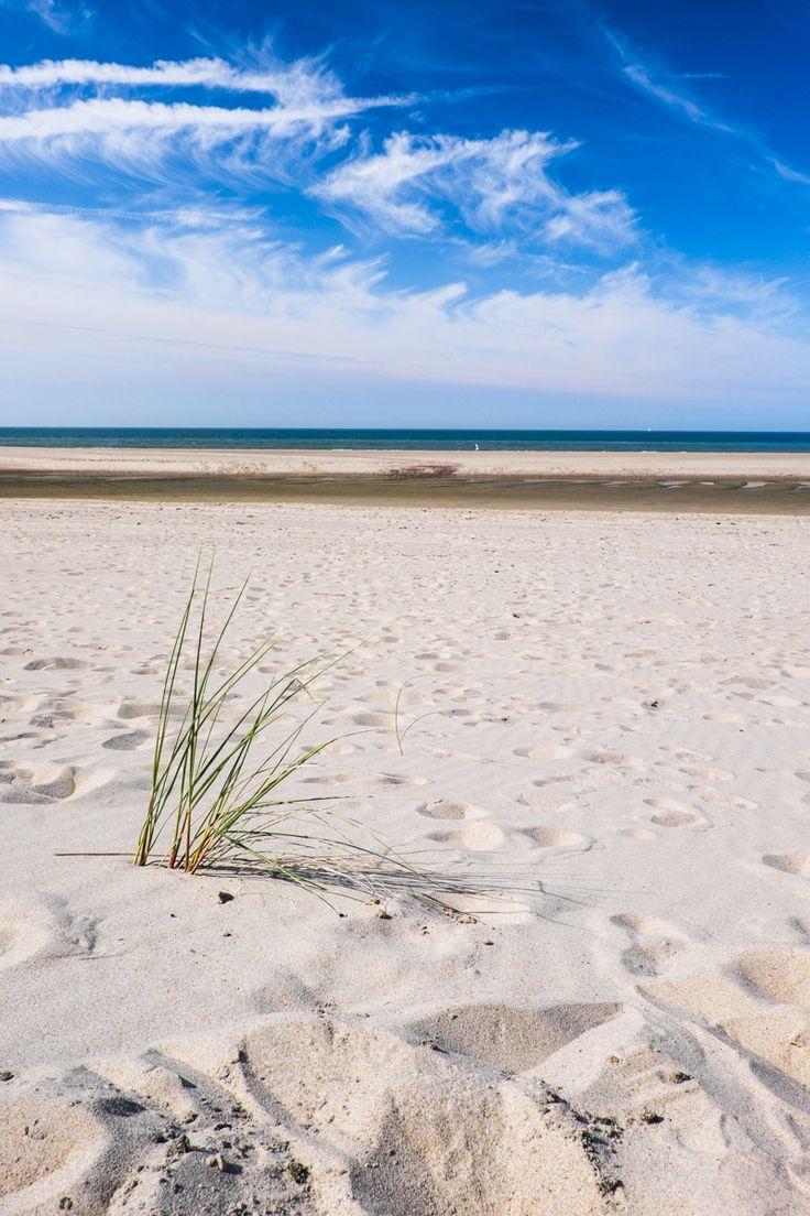 Strand /beach Vrouwenpolder. Fuji X-T1