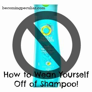 no shampoo method. A great post! I've been doing this for over a year, am down to one hair wash/week and my hairdresser says I have beautiful healthy hair and that it grows so fast! :) you should try it!