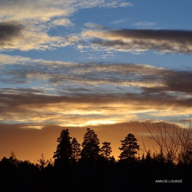 Twilight, Wednesday, 9th December 2015, view from the Garden.