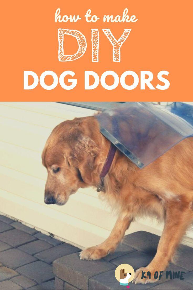 7 Diy Dog Door Plans Give Your Canine Easy Outdoor Access In 2020 Diy Dog Stuff Dog Door Diy Doggie Door