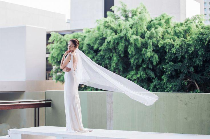 Brisbane's best wedding photographer