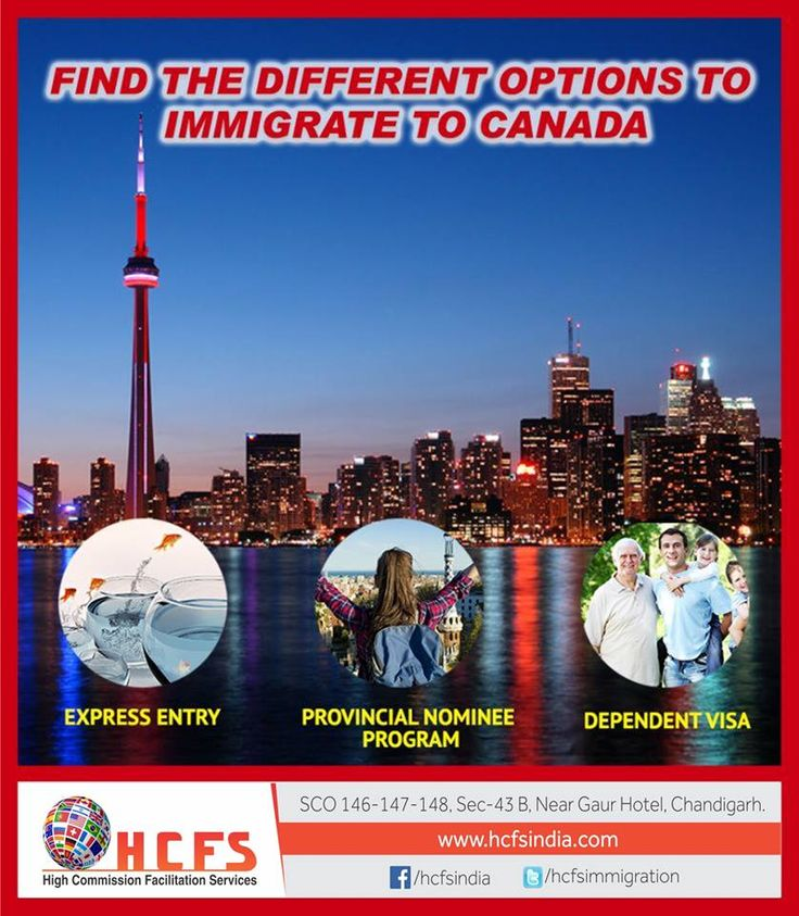 Find Here The Different Option To Immigrate To Canada. #Your_Study_Abroad_Journey_Begains_Here #HCFS Help You @ Every Step. FREE #COUNSELLING!! Contact us @ 07087035340
